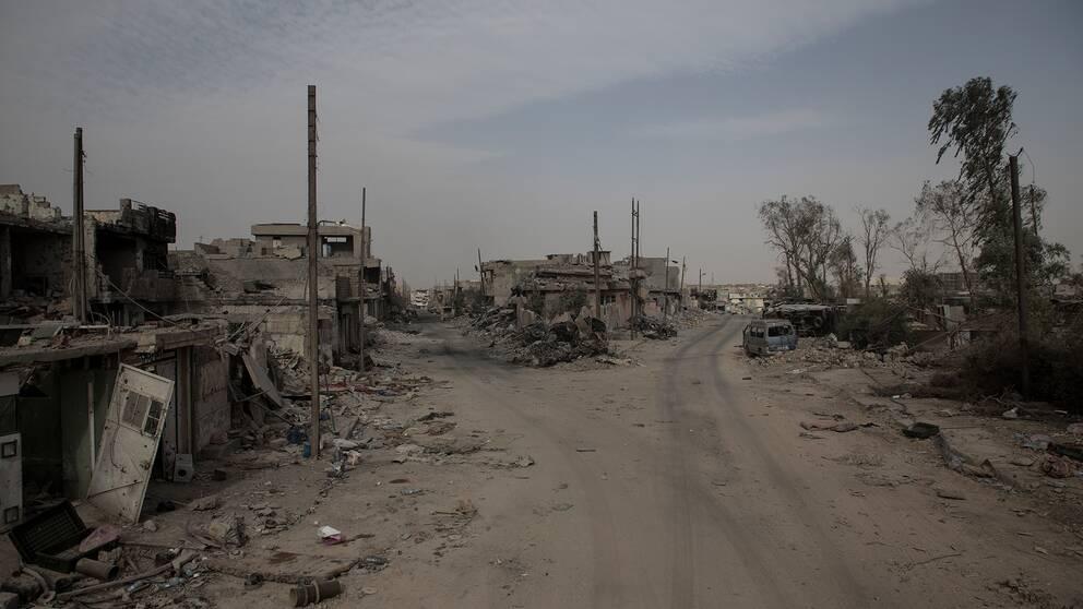 Mosul, en stad som vilar i total förödelse