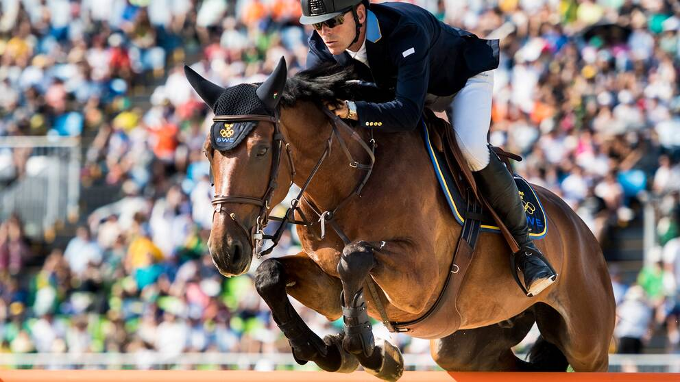 Dubbel svensksuccé i hästhoppning  0495bede019bb