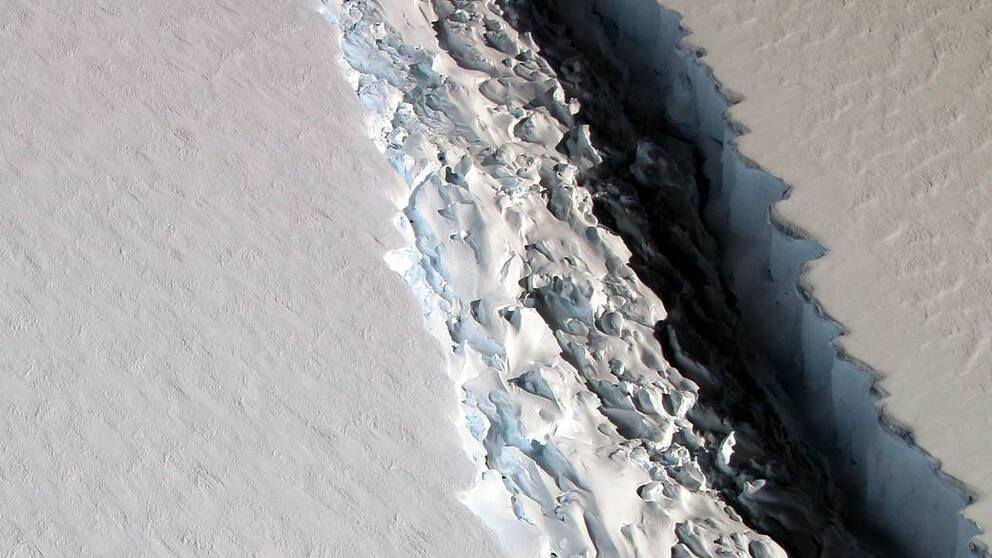 Sprickan i isen på den del av Antarktis som kallas Larsen C, fotad av Nasa i november 2016. Nasas forskare mätte då att sprickan var drygt 11,3 mil lång.