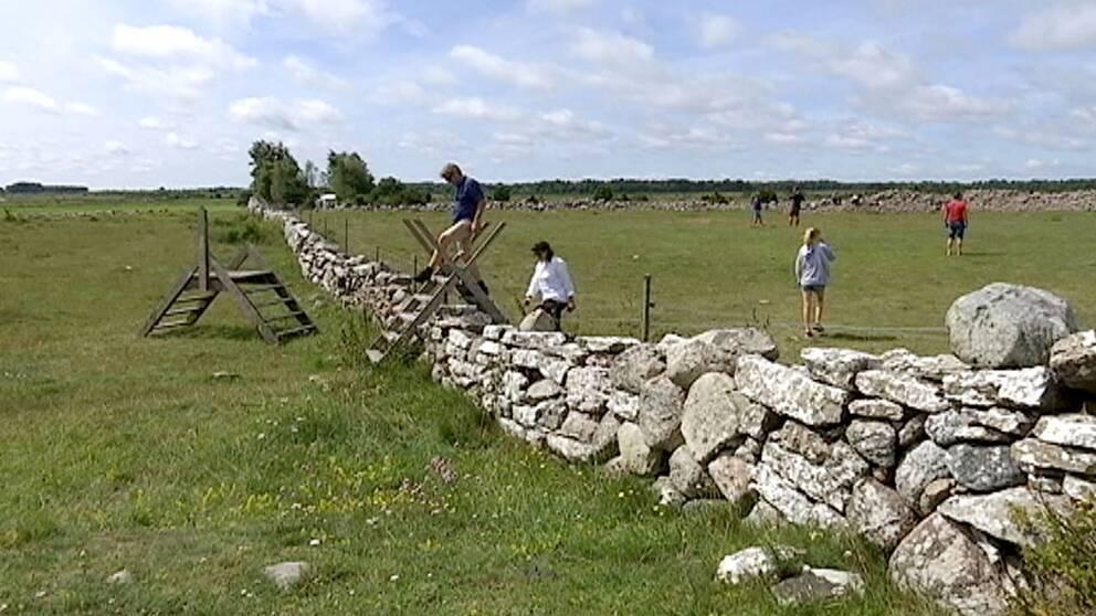 Utgrävningarna vid fornborgen Sandby borg på Öland har rönt stort intresse.