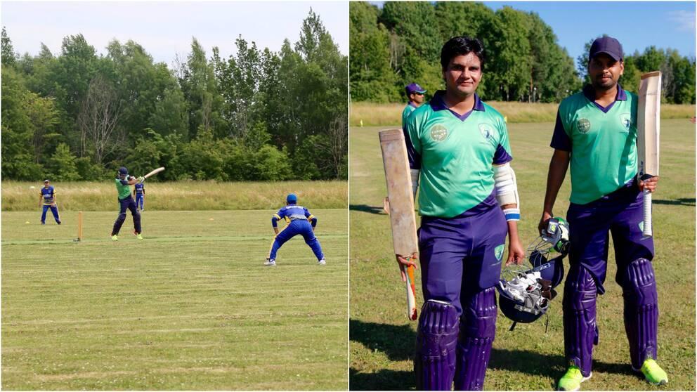Umeå Cricket Club