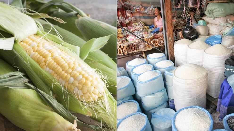 Arkivbild. Straffet kan bli hårt om man snattar ris eller majs i Nordkorea.
