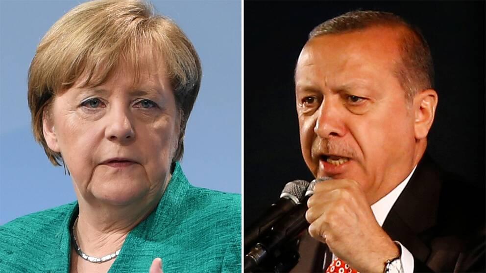 Tyskarna vill folkomrosta om turkiet