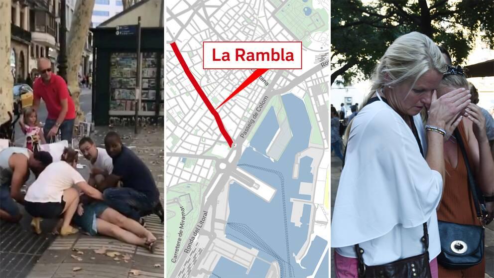 Flera personer har blivit påkörda i centrala Barcelona. Spanska polisen behandlar händelsen som en terrorattack. 13 har bekräftats döda och över 50 har skadats.