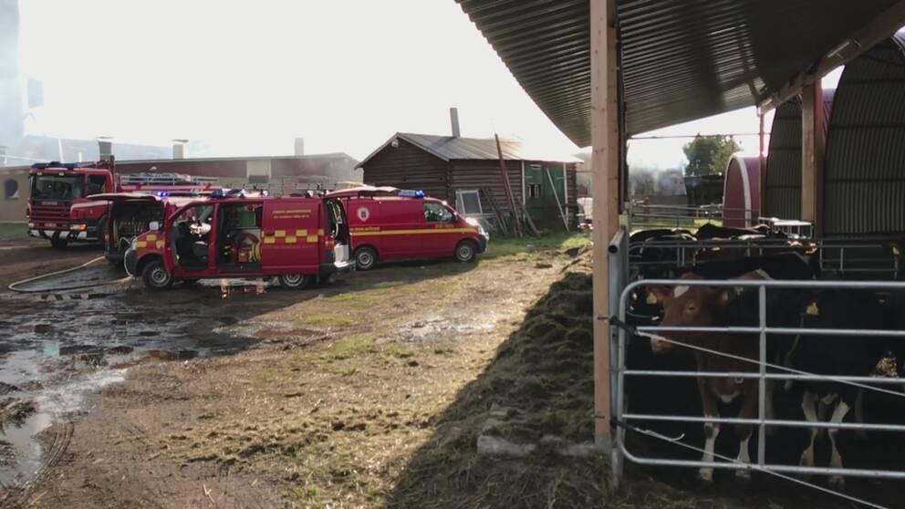 Brand i verkstad 40 tal evakuerade