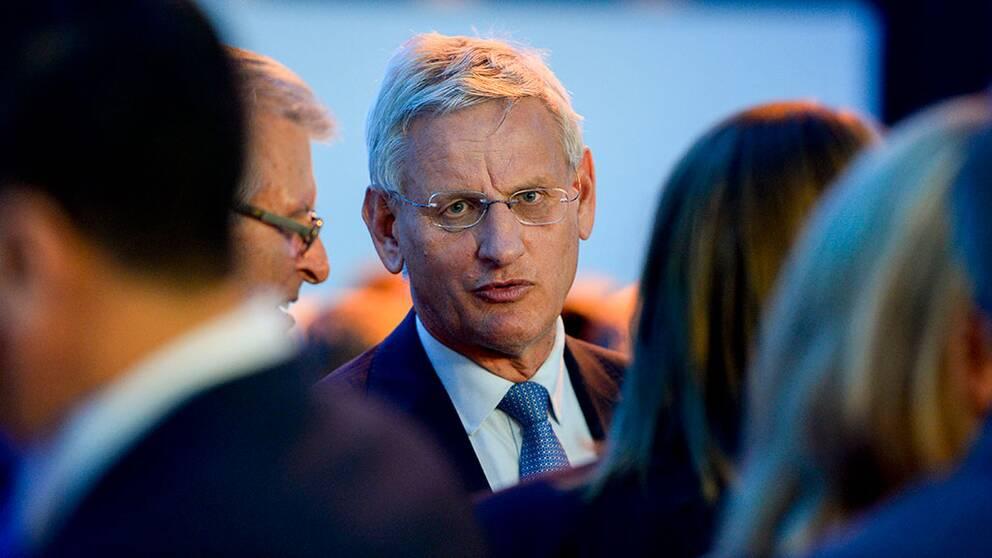 Carl Bildt favorit som ny M-ledare