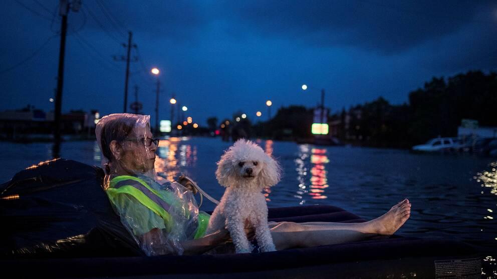 En äldre kvinna flyter på en luftmadrass med sin hund på Scarsdale Boulevard i Houston, medan hon väntar på att bli evakuerad.