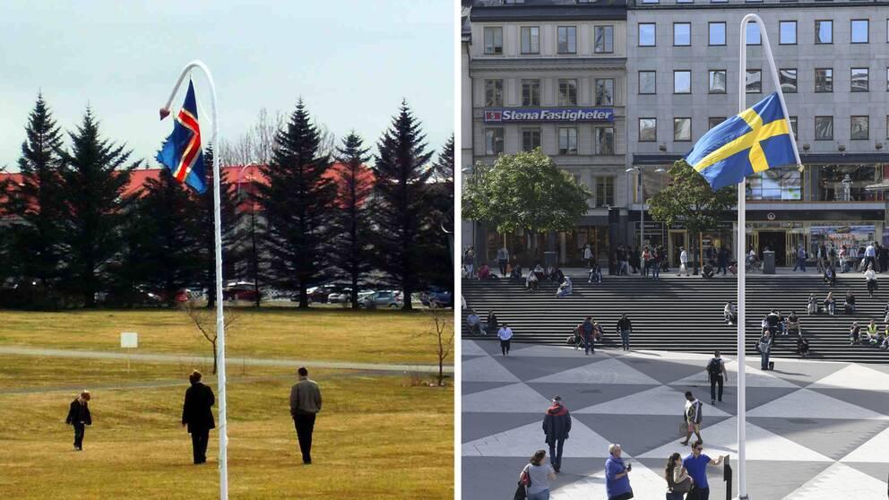 Svensk misstanks ha skandat flagga