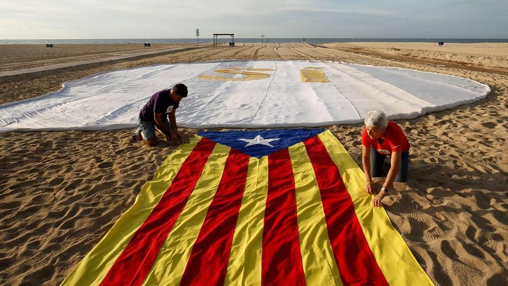 Aktivister vecklar ut en självständighetsflagga inför omröstningen i Katalonien