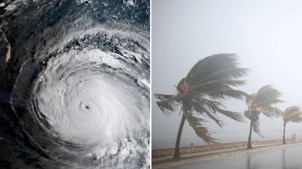 Bild på stormen och bild från Kuba.
