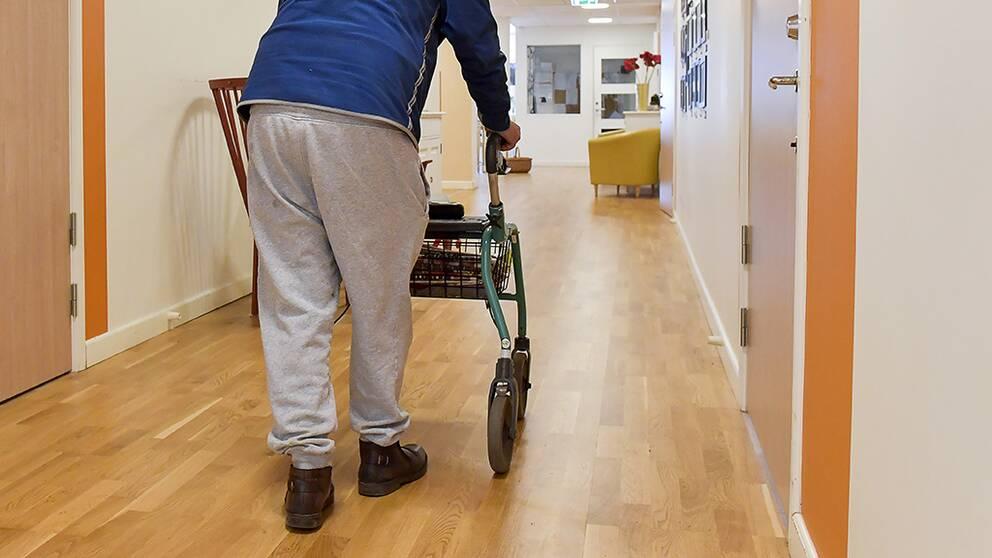 anonym äldre person går med rollator i korridor