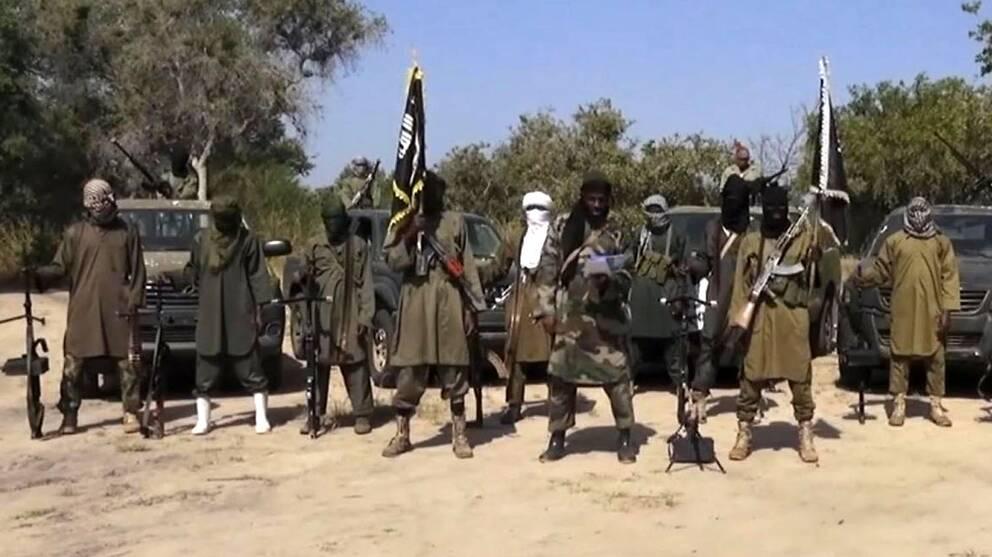 Medlemmar ur terrorgruppen Boko Haram poserar i Nigeria