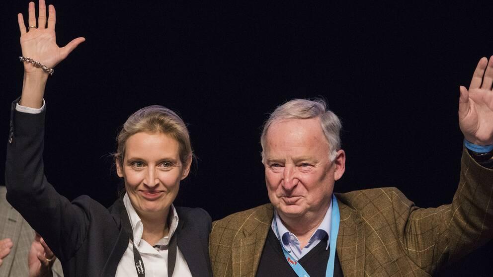 Alice Weidel, till vänster, och Alexander Gauland är högerpopulistiska AFD:s toppkandidater inför valet till förbundsdagen i september.