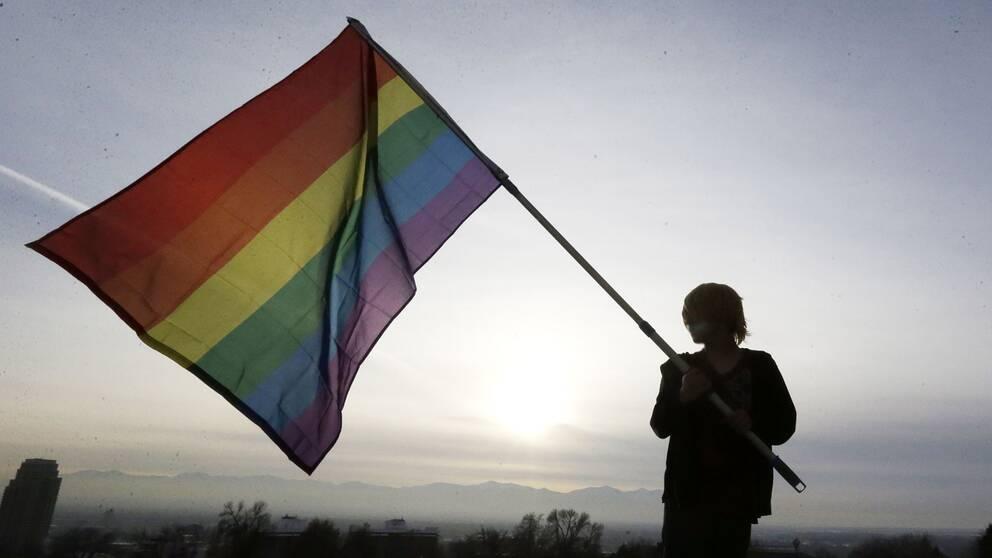 En person håller i en regnbågsflagga.
