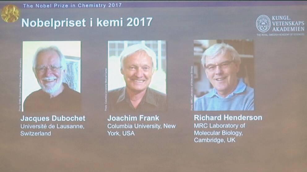 Internationell trio får Nobelpriset i Kemi