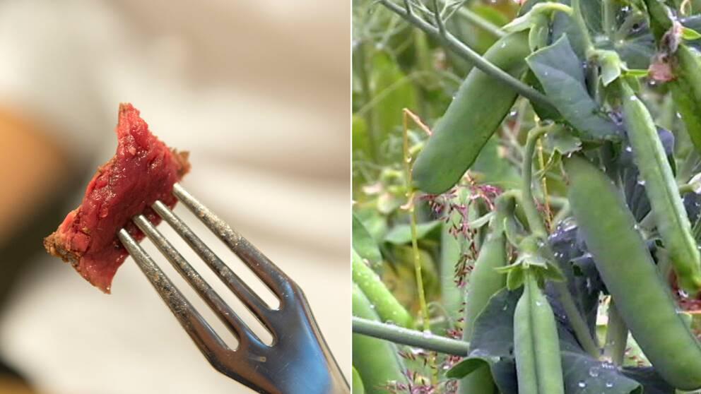 Ny forskning vi maste bli vegetarianer