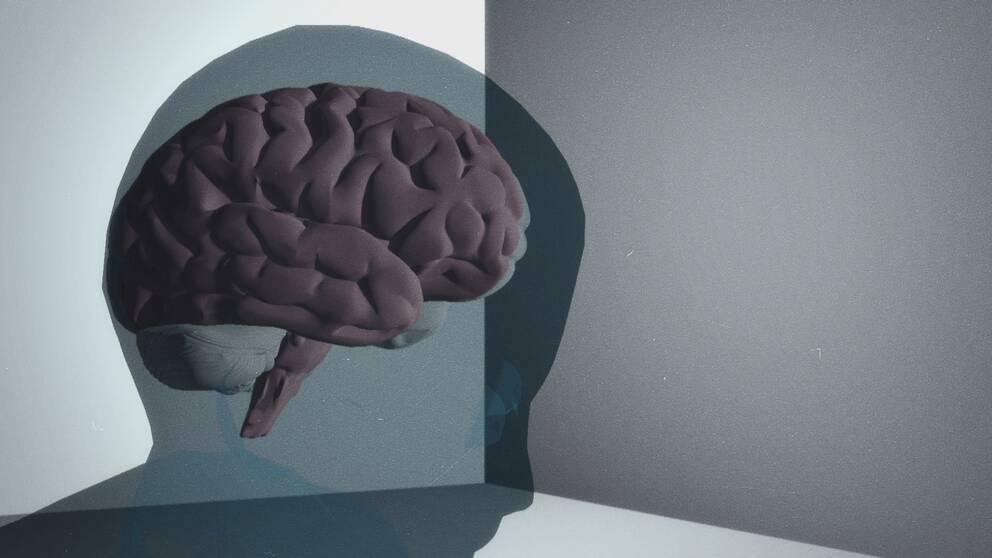 grafikbild på hjärna