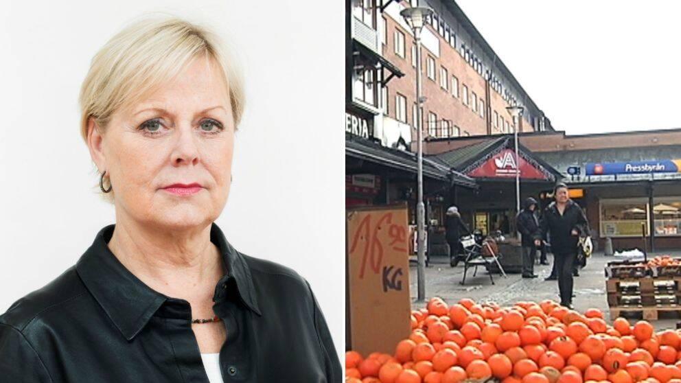 Lena Ag blir generaldirektör för den nya Jämställdhetsmyndigheten
