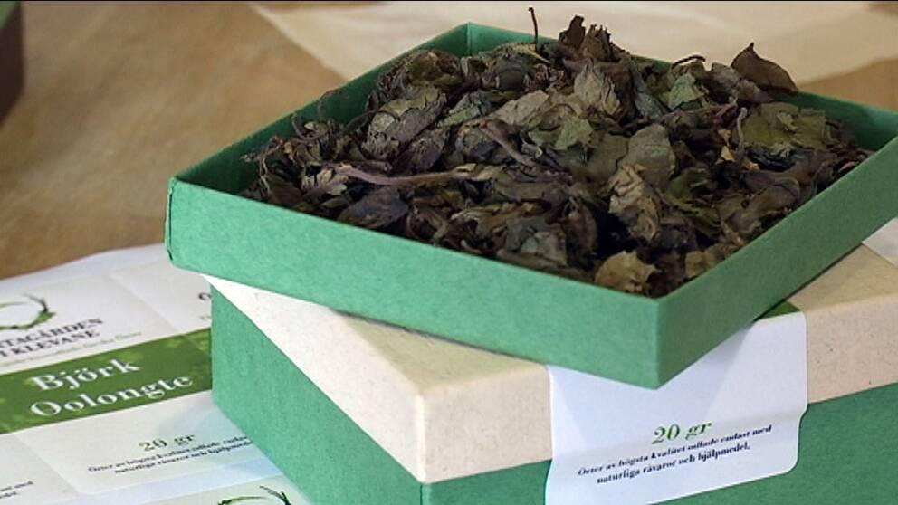 Ett fermenterat te av björklöv vann brons i SM