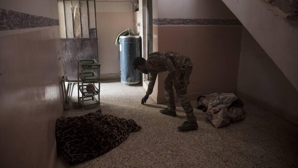 Den irakiska bombgruppen söker av ett av husen i Hawija.
