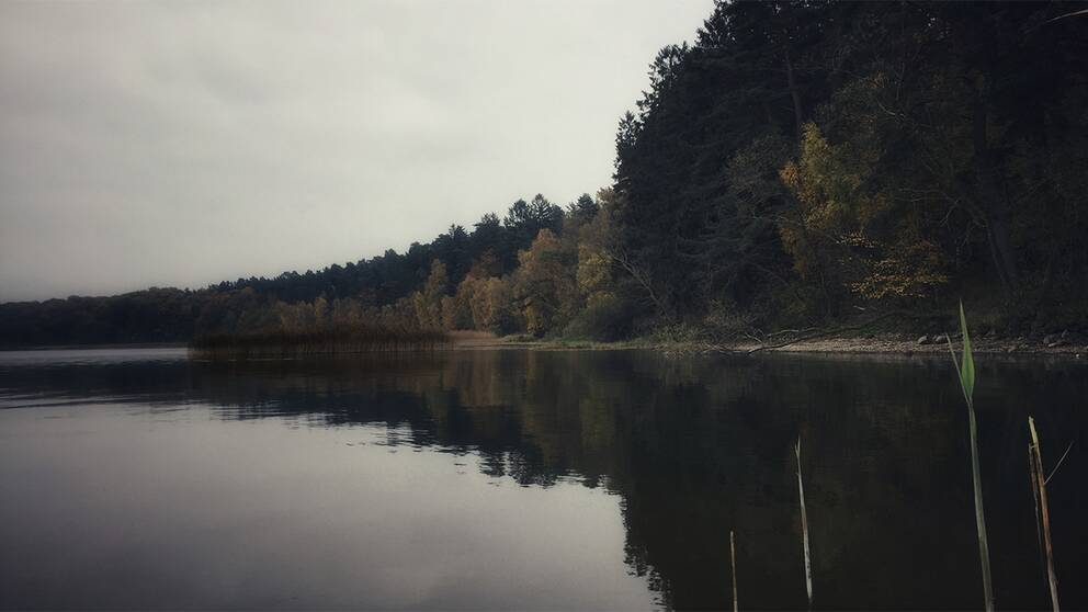Vombsjön är råvattentäkt för 400000 hushåll.