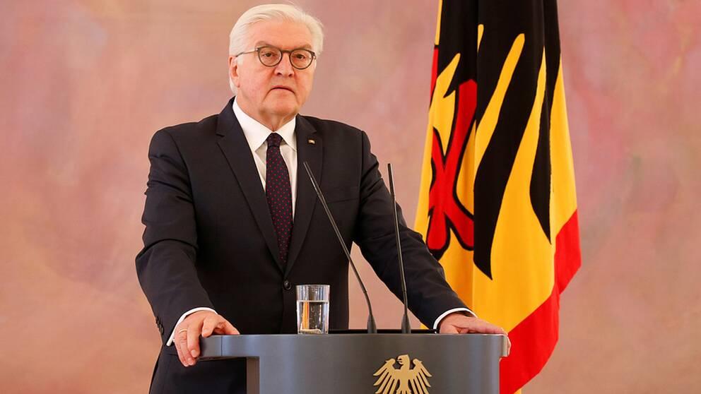 Tysklands president Frank-Walter Steinmeier vill att de valda politikerna tar sitt ansvar och bildar regering.