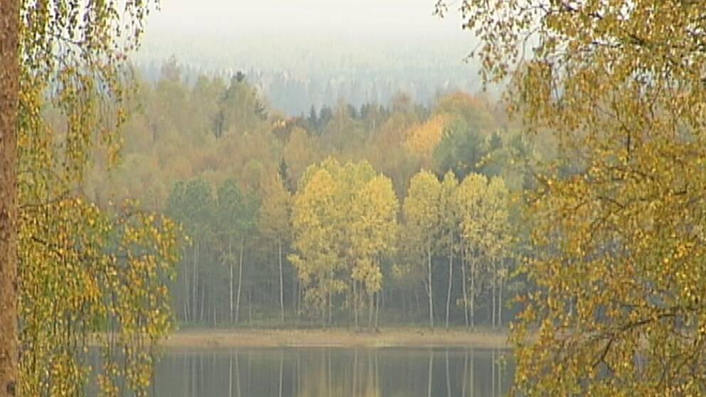 Oktobervädret 2007