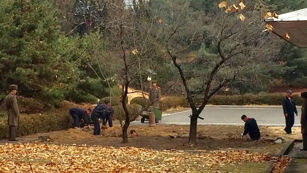 Nordkoreanska soldater gräver ett dike vid flyktplatsen.