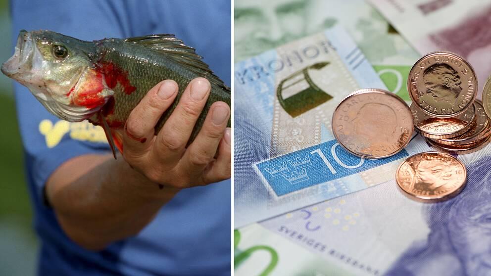 Fuskfälld forskare blev av med tre miljoner kronor