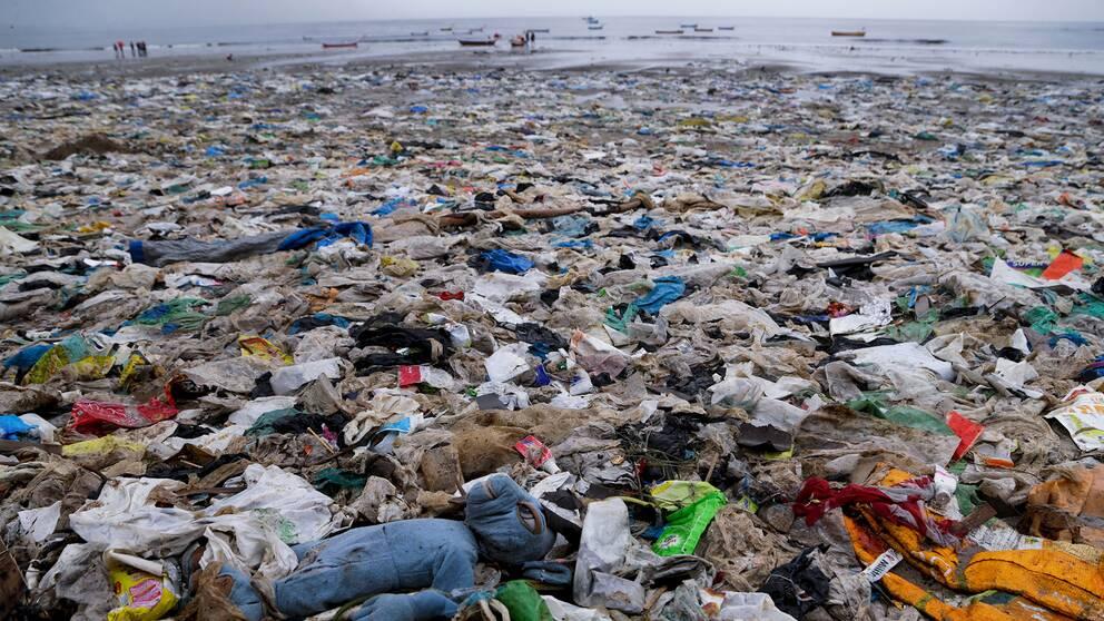 En strand i Bombay, Indien, helt täckt av skräp som mestadels består av plast.