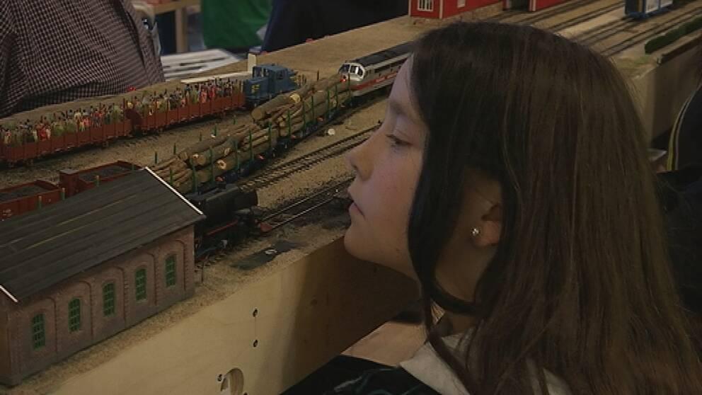 Många var intresserade av modeltågen.