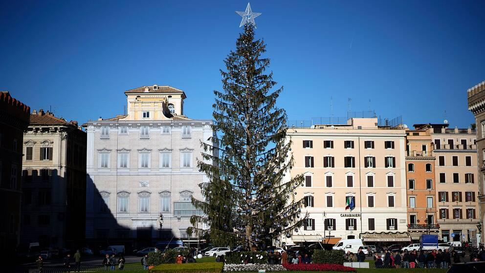 Roms utskrattade julgran.