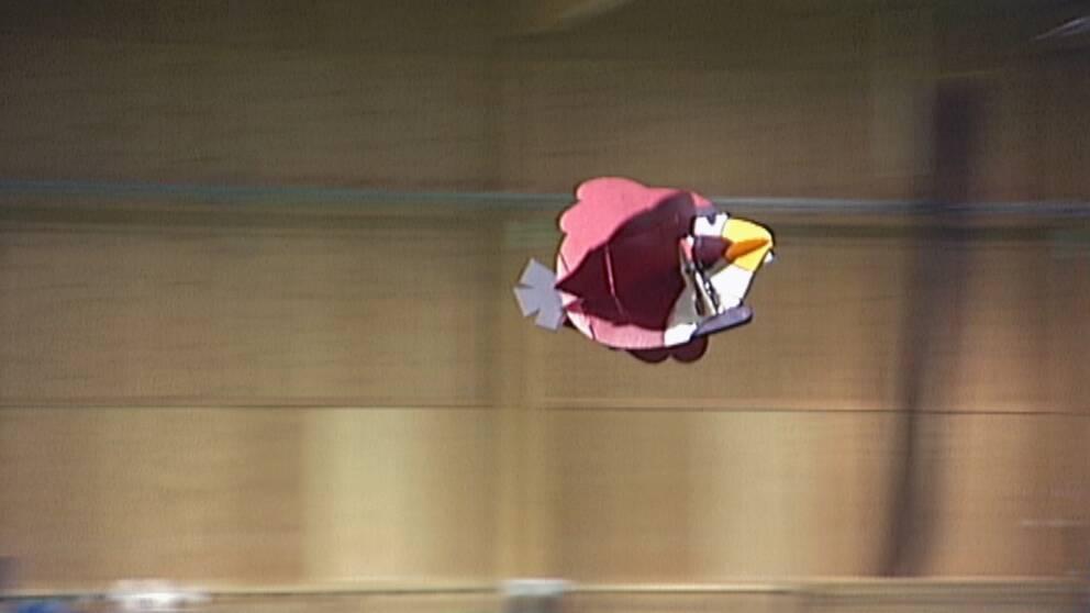 Ett modellflygplan som ser ut som en angry bird