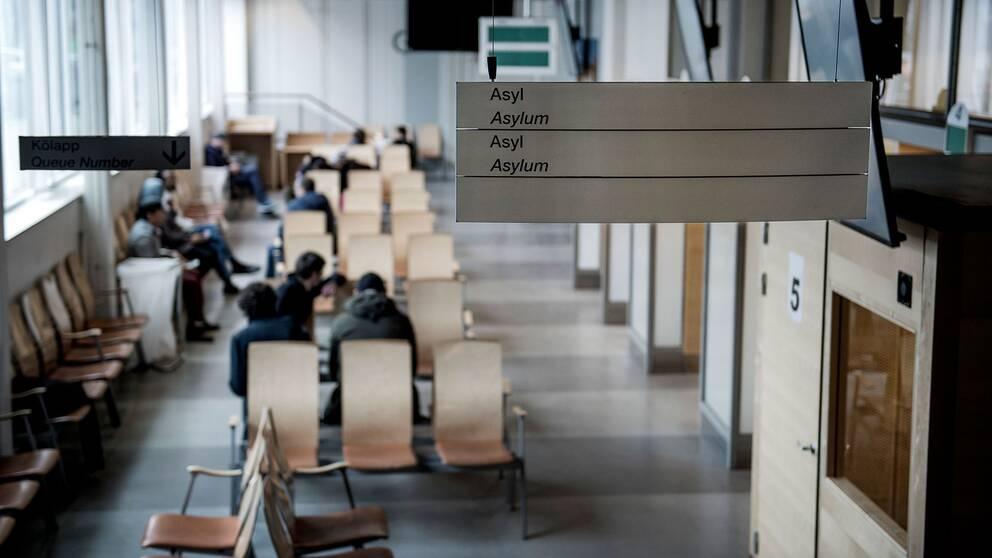 Asylmottagning på Migrationsverket