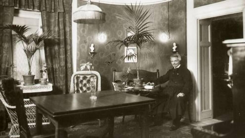 Image result for strindbergsmuseet