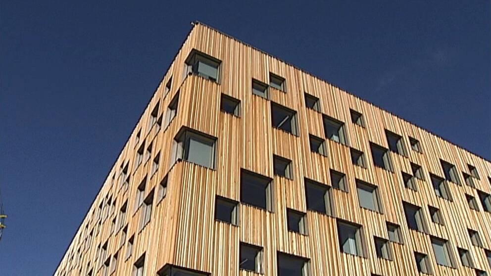 Umea vill ha arkitekthogskola