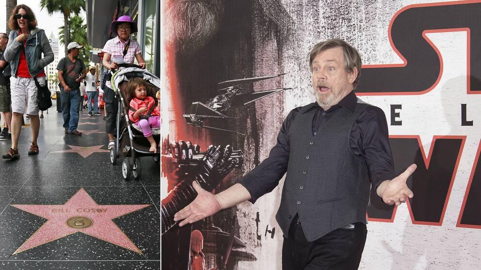 Mark Hamill är mest känd som Luke Skywalker – nu får han en stjärna på Hollywood Boulevard i Los Angeles.