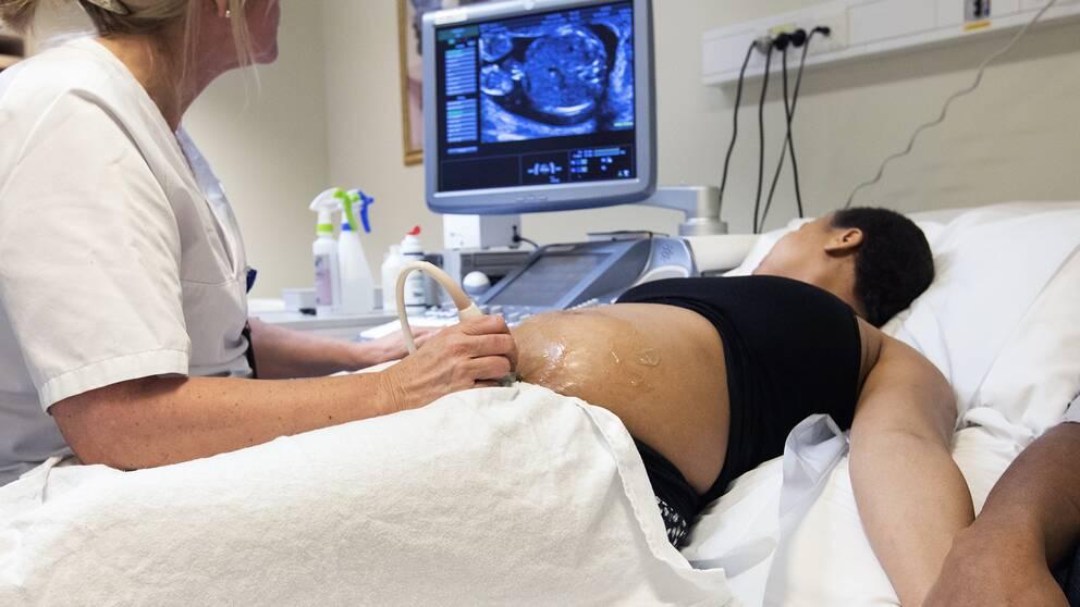 En gravid kvinna ligger i en sjukhussäng. En barnmorska undersöker kvinnans mage med ultraljud.