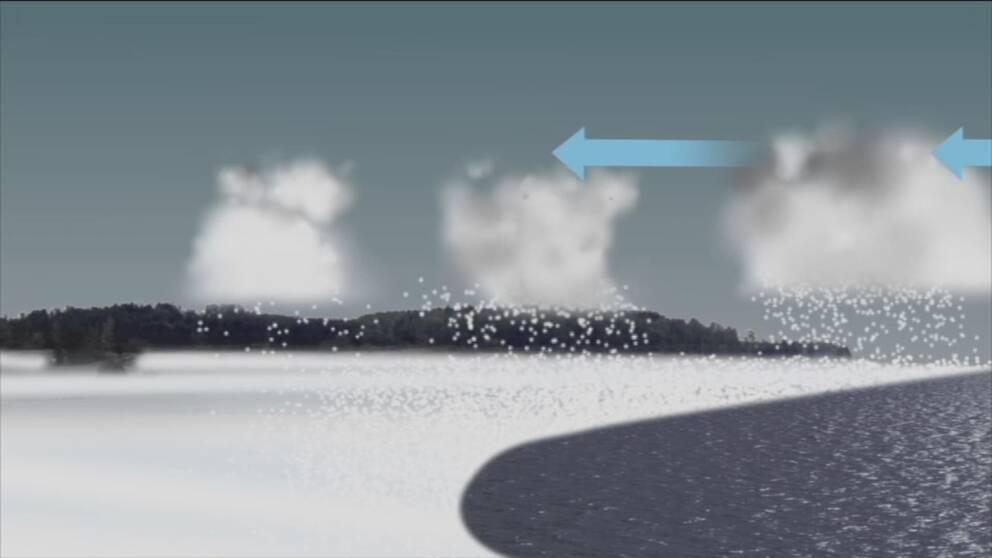 Är det kallt och det blåser det från ett öppet hav in mot land kan snökanoner bildas där snöby efter snöby matas in på samma ställe så länge vindriktningen består.