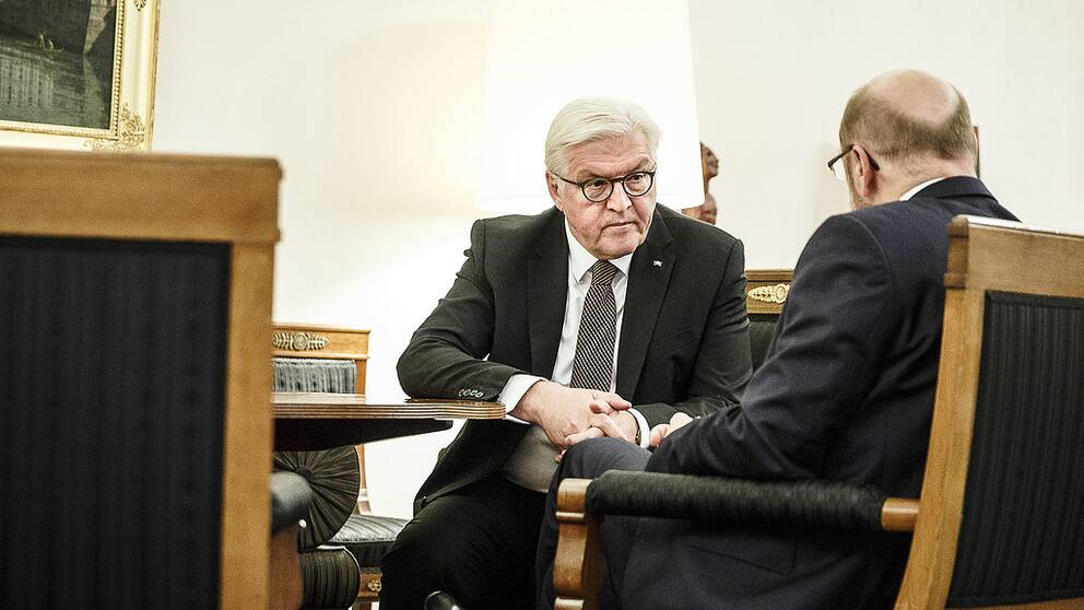 Den populäre presidenten Frank-Walter Steinmeier lyckades förmå det socialdemokratiska partiet att gå in i en ny stor koalition med Merkels kristdemokrater.