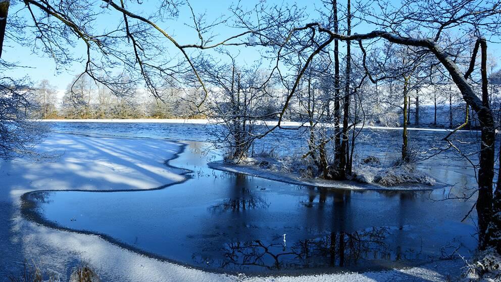 Det känns som våren är här. Några minusgrader och sol samt det har kommit lite snö inatt.Haby, Västergötland.