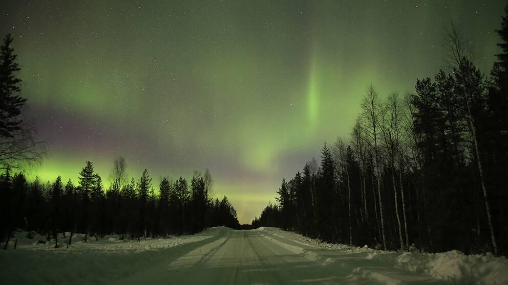 Norrskenet varierade från stillsam och lugn aktivitet i grönt till pulserande och färgstarkafärger strax utanför Vuollerim nära Soinakbäcken.