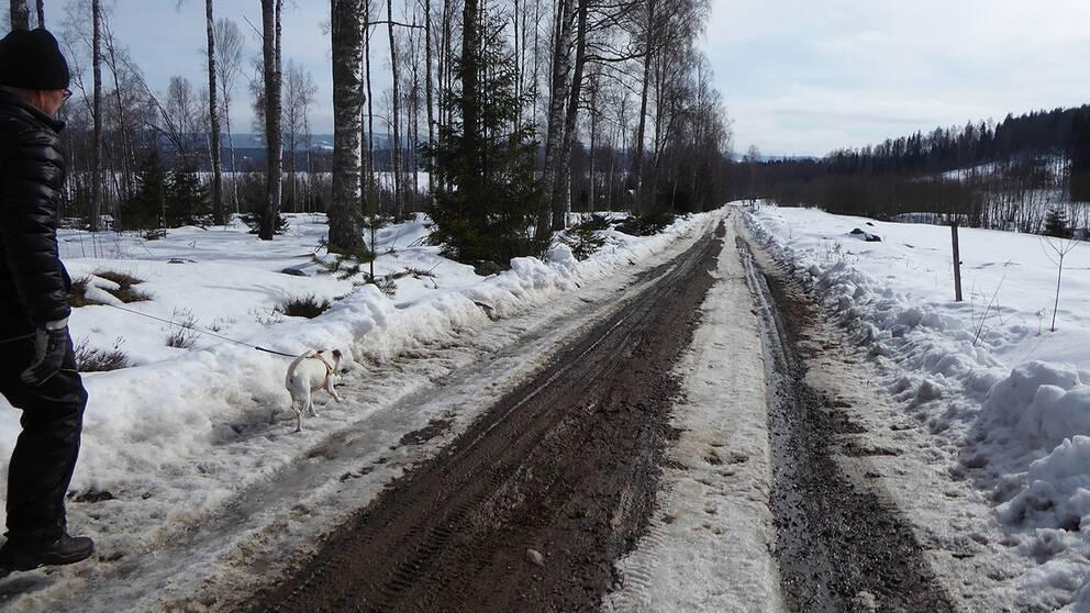 Nu är våren på väg! Spelnäs i Värmland.