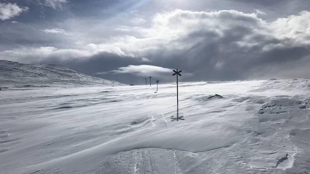 15-20 m/s sydvästlig motvind men tidvis härlig sol – på väg till Blåhammaren, Jämtland