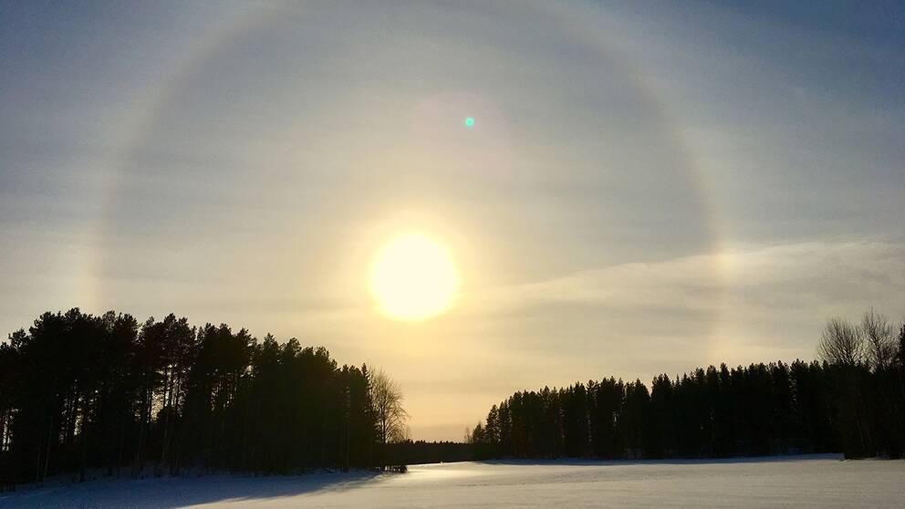 Hjoggböle utanför Skellefteå, Västerbotten, den 23 mars
