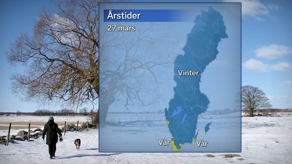 Årstidernas läge efter att temperaturdygnet den 26 mars avslutats. Blått betyder vinter (medeltemperatur under 0 grader) och gult betyder meteorologisk vår (medeltemperatur över 0 grader).