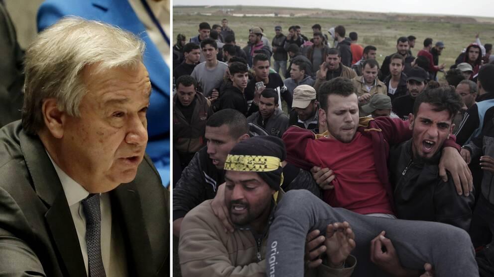 Tva palestinier dodade i gaza 1