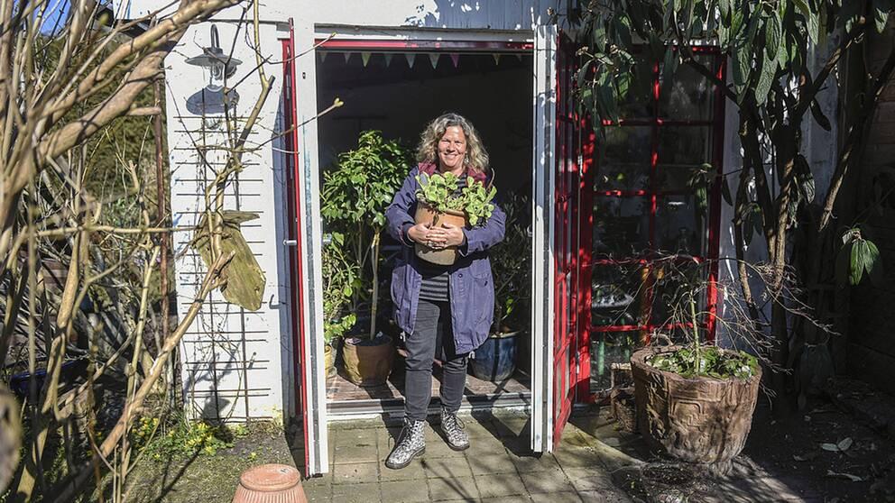 Gunnel Carlson tar ut sina robusta växter ur kallväxthuset på dagarna.