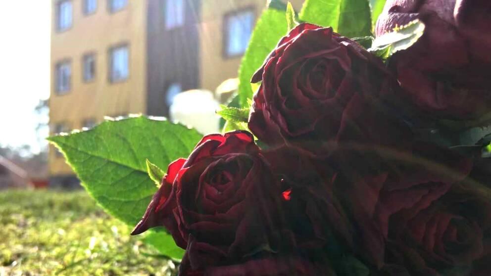Blommor utanför ett hus