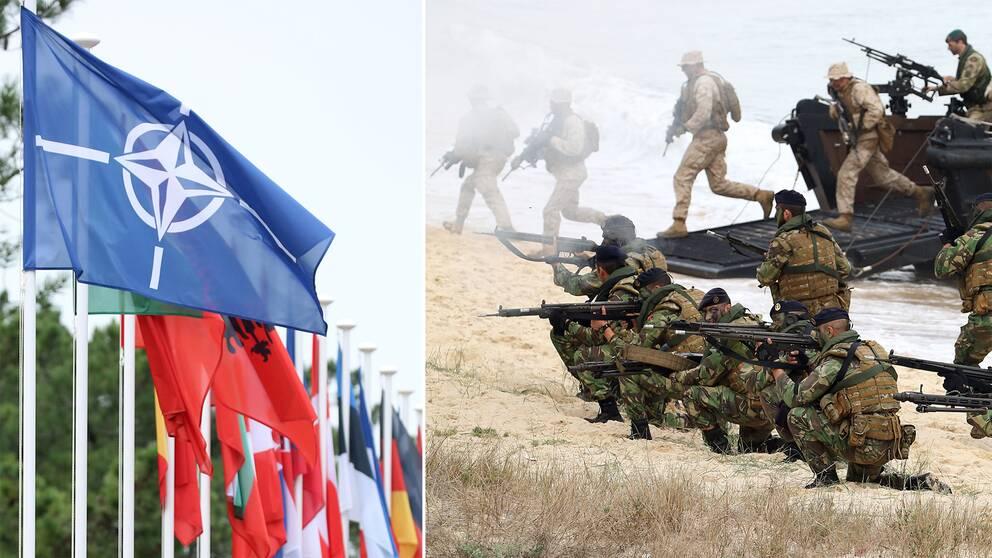 Här landstiger brittiska och portugisiska soldater i Portugal vid Natoövningen Trident Juncture i Troia i Portugal 2015. Till vänster Natoflaggan.